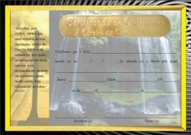 Certificado  de ordenação a Obreiro a casa do Senhor,cada