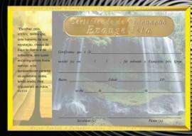 Certificado de Ordenação evangelista,cada